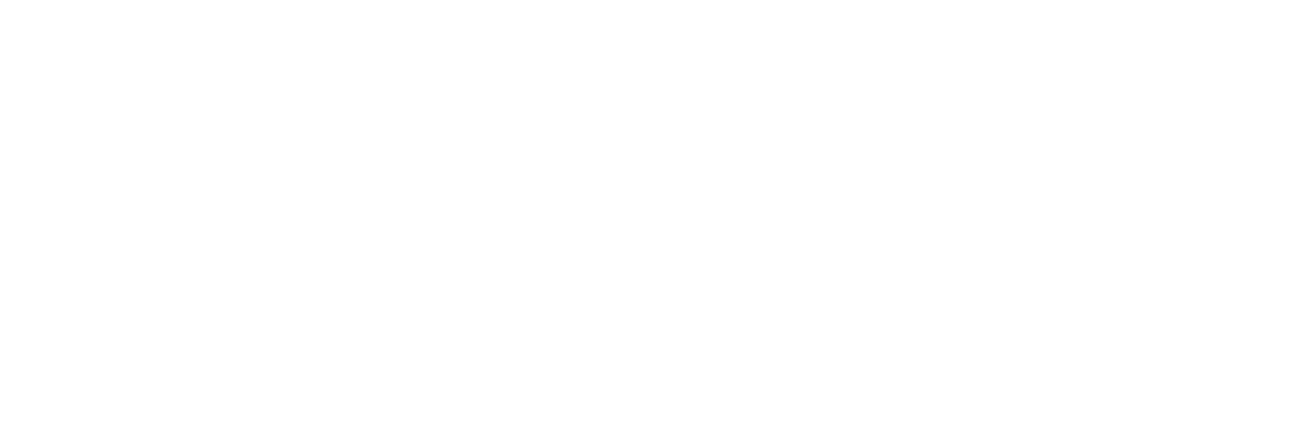 Lightico Logo Final_White no padding-1